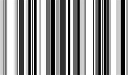 Imagen de ELM-17